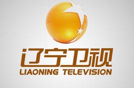 无痛分娩中国行品牌巡礼 辽宁卫视北方频道《直通市县区》